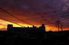 Sunset Sky (hidesax) Tags: sunsetsky home roof balcony dramatic sunset sky silhouette wires clouds ageo saitama japan hidesax leica x2