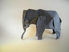 African Elephant - Miyamoto Chuya (Rui.Roda) Tags: origami papiroflexia papierfalten elefante african elephant miyamoto chuya