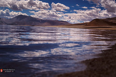 ~ moods of nature ~ (whoisnd) Tags: mood alone lonliness vastness colors reflection blueonwater india incredibleindia ladakh leh pangong