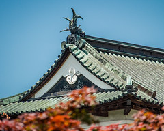 Hirosaki Castle (campra) Tags: japan hirosaki  aomori  castle fish shachihoko  roof shibi