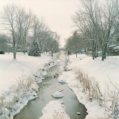 Yashica_ (16) (dvlmnkillatron) Tags: winter 120 6x6 film analog creek mediumformat mat 124 medium format yashica selfdeveloped yashicamat124 kodakportra