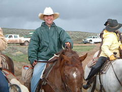 horsedrive2003012