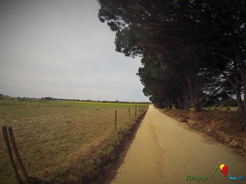 TravessiaBTT_Leiria-Sagres_7Dia_027