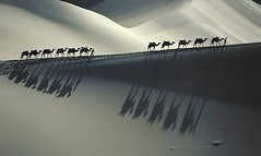 2140 The Gobi Desert--Gansu Province , China (ngchongkin) Tags: gobi nationalgeographic musictomyeyes autofocus friendsforever minimalisme finegold thegalaxy allthatglitters frameit vivalavida flickraward flickrbronzeaward heartawards platinumheartaward primusinterpares earthasia thebestofday gnneniyisi thebestshot discoveryphotos visionaryartsgallery bestpeopleschoice wonderfulasia buildyourrainbow 2heartsawards blinkagain greaterphotographers photographyforrecreation photographyforrecreationl2 photographyforrecreationl3 photographyforrecreationlevel5 photographyforrecreationlevel4 artistoftheyearl2 artistoftheyearl3 lamiasonata artistoftheyearl4 autofocuslevel2 administrationexquisite autofocuslevel3 niceasitgets magicmomentsinyourlife autofocuslevel4 magicmomentsinyourlifelevel2 thelooklevel1red thelooklevel3orange thelooklevel4purple thelooklevel5green thelooklevel6blue thelooklevel7white niceasitgetslevel2 niceasitgetslevel3 niceasitgetslevel6 niceasitgetslevel5 opticalexcellence theguardianofart frameitlevel3 frameitlevel2 frameitlevel4 administrationexquisitelevel2 batslair buildyourrainbowl3orange buildyourrainbowl4yellow infinitexposure infinitexposurel2 infinitexposurel3 infinitexposurel5 infinitexposurel6 visionaryartsgalleryelitel3 tgiaward infinitexposurelevel4 visionaryartsgalleryl2 buildyourrainbowl2orange minimalismelevel2 buildyourrainbowl1red