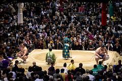 Sumo in Osaka-49 (Rodrigo Ramirez Photography) Tags: japan amazing traditional professional tournament osaka sumo yokozuna ozeki makuuchi hakuho sumotori sumotournament maegashira reikishi harumafuji topdivision