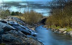 Taff Bargoed Park (G.B.Photography) Tags: park bridge tree water grass wales landscape nikon taff waterscape ston bargoed d5200
