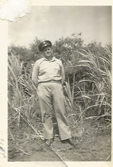 Scan_20160706 (6) (janetdmorris) Tags: world 2 history monochrome century america vintage army hawaii us war pacific military wwii grandfather monochromatic front 1940s ii ww2 granddaddy forties 20th usarmy allies allied
