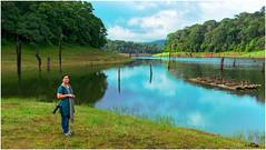 periyar lake (Rakesh Kumar Dogra) Tags: tiger dogra rakesh kumar lakeperiyar periyarperiyar reserveindialandscapewestern ghatswetlandrakesh