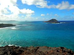 DSCN2458 (isqldb2) Tags: beach island hawaii makapuu makapuulookout