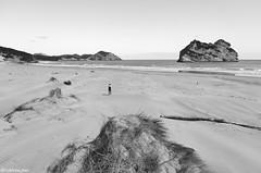Wharariki Beach (@robinlautier) Tags: newzealand nz travel trip explore discover nikon d5100 landscape paysage beach plage sea ocean mer