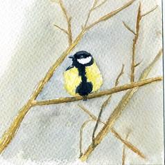 Msange charbonnire (ybipbip) Tags: watercolor painting paint aquarelle peinture watercolour acuarela pintura aquarell acquerello akvarell
