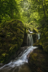 Shimmering veils of light (Manuel.Martin_72) Tags: trees green fairytale river landscape switzerland waterfall moss spring woods nikon rocks afternoon outdoor stones valley gorge zrich forests enchanted ch fllanden d810 manuelmartin wwwmanuelmartinphotographycom