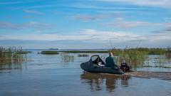 White envy (pilot3ddd) Tags: stpetersburg lisiynos fisherman gulfoffinland rubberboat emeraldprincess balticsea olympuspenepl7 panasoniclumixg1232