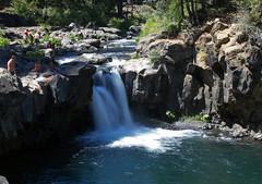 McCloud_Lower Falls (Dwine76) Tags: mccloudfalls lowerfalls california falls water river mccloudriver shasta three
