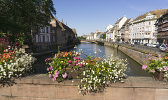 Flowers (l4ts) Tags: europe france alsace strasbourg canal canaldesfauxremparts flowerdisplays worldheritagesite unesco