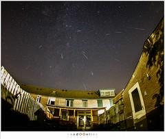 Collection of Perseds meteors (nandOOnline) Tags: vallendesterren meteorieten tuin fallingstars perseids meteoren perseiden sterren thuis helmond nbrabant nederland