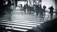Tokyo Midnight Walkers (www.danbouteiller.com) Tags: japan japon japonia japanese japonais tokyo iidabashi city ville urban asian asia asiatique street streetscene streetlife streets streetshot streetphoto streetphotography photo rue photoderue photographer photographie people crosswalk bynight night nuit nocturne nocturnal canon canon5d eos 5dmk2 5d 5d2 5dm2 samyang samyang14mm 14mm 14 mono monochrome monochromatic black white noir blanc nb bw blackandwhite blackwhite blacknwhite noiretblanc noirblanc light