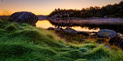 Morning light, Norway (Vest der ute) Tags: g7x norway rogaland ryksund earlymorning trees seascape landscape reflections fav25