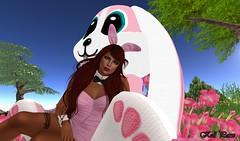 coelhinha s2 (Kell Parx) Tags: rabbit easter happy s2 pascoa coelhinha