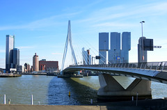 Rotterdam, de 'Zwaan' brug, Nederland 2015 (wally nelemans) Tags: rotterdam brug bridgeerasmusbrug erasmusbridge dezwaan nederland holland thenetherlands 2015 maas meuse rivier river theswanbridge