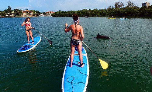 4-22-15-Norman-and-Family-lido-mangrove-tunnels 3
