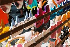 どっちがいい? (TKBou) Tags: festival japan tokyo 85mm 日本 東京 f3 asakusa 浅草 淺草 fujicolor 子供 面 浅草神社 三社祭り