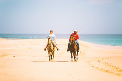 Ride (Thomas Hawk) Tags: vacation horse beach mexico cabo fav50 bajacalifornia baja cabosanlucas loscabos fav10 fav25