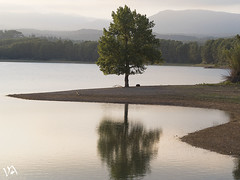 Solo (:) vicky) Tags: arbol pantano espaa esolympus atardecer water wow sunset sol spain vickyepla vicky valencia visionario puestadesol hiking