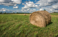 Hay Bales (NonFace) Tags: sky color field clouds rural farm sony country rustic hay bales rx100m3