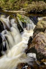 Free at last (pauldunn52) Tags: river iron mid wales abergwesyn common