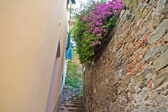 2016-07-04 at 11-53-51 (andreyshagin) Tags: riomaggiore cinque trip travel town tradition terre architecture andrey shagin summer nikon d750 daylight