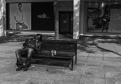 Power Nap (LegoLee) Tags: mono bw blackandwhite bradbury man sleep nap bench street streetphotography asleep adverts miltonkeynes buckinghamshire shoppingcentre pavement seat tree shadows hat cans jeans jacket