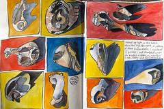 broken shells (Evelyn Bach) Tags: shells sketch drawing diary journal sketchbook brushpen skizzen zeichnen