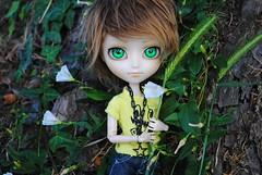.: Yoshino :. (.: Miho :.) Tags: isul mao jun planning groove doll dolls obitsu parabox fur wig cute