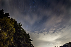 (micahmoreland) Tags: longexposure trees sky night forest stars star nighttime astrophotography