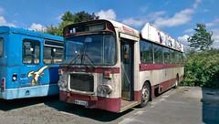 A long time stored (Renown) Tags: bus singledecker bristol re rell rell6g alexander belfast citybus bxi2562 wealden psv rbw northernireland
