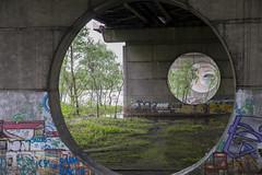 DSC_5803 (kabatskiy) Tags: city bridges cars nature abstracts cats beer