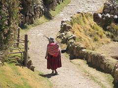 "Lac Titicaca: l'Isla del Sol <a style=""margin-left:10px; font-size:0.8em;"" href=""http://www.flickr.com/photos/127723101@N04/28492552772/"" target=""_blank"">@flickr</a>"