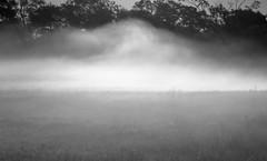 green cloud (Isaiah62:1) Tags: monochrome blackandwhite cloud fog field landscape a6000 sonya6000photos dnlens travellight moody