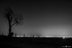 Bajo tu luz (Jose Luis Fernandez Gonzalez FOTOGRAFIA) Tags: blanco y negro nikon sevilla camara cielo campo luz libertad life light lugar luces linternas luna flickr estrella espaa estrellas andalucia airelibre noche nocturna night nocturnas naturaleza nature