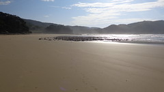 Second Beach (Rckr88) Tags: port st johns portstjohns easterncape eastern cape southafrica south africa second beach secondbeach sea water outdoors beachsand sand coast coastline coastal waves wave rocks rock sun greenery green clouds travel outdoor mountains nature