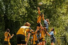 JKK_1663 (SRC Thor Gallery) Tags: 2016 thor castricum dames rugby