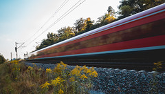 red lines (David Go ~) Tags: redlines train zug fast longexposure langzeitbelichtung germany nature outdoor natur karlsruhe tree schiene gleise projekt2016 davego davidgo canoneos6d sigmaart35mm weitwinkel festbrennweite moving bewegung
