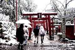 _VTR4635 (Vitor Nakaba) Tags: winter cold temperature japan torii japanese culture
