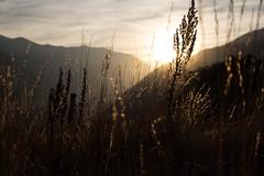 Golden Hour (codeseven) Tags: golden hour switzerland riedbrig sunset alps mountains