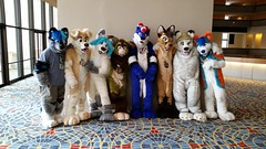 Dream Machine Photoshoot FWA 2015 - Shots by Lykanos (30) (Lykanos) Tags: furry photoshoot dreammachine fwa fwa2015 dmcostumes