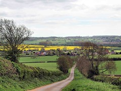 Country road 037 (saxonfenken) Tags: road yellow rural village thumbsup drayton countyroad gamewinner 6841 challengeyou herowinner 6841land friendlychallengesunam