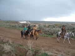 horsedrive2003020
