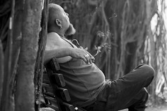 Looking up the Banyan Tree (henkieP) Tags: portrait blackandwhite india bench goa banyantree cigarettesmoke henkvogel