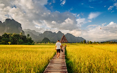 Boardwalk between rice fields in Vang Vieng, Laos (syukaery) Tags: trip travel vacation mountain man tourism nature clouds walking hotel countryside nikon scenery asia rice paddy farm balloon scenic tourist resort d750 fields accommodation laos karst humaninterest